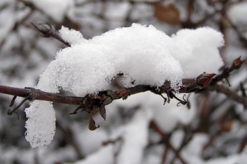 Зима, крестьянин торжествуя
