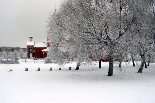 Зима на петербургщине, родине слонов и Деда Мороза