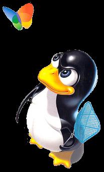 О домашних пингвинах 1